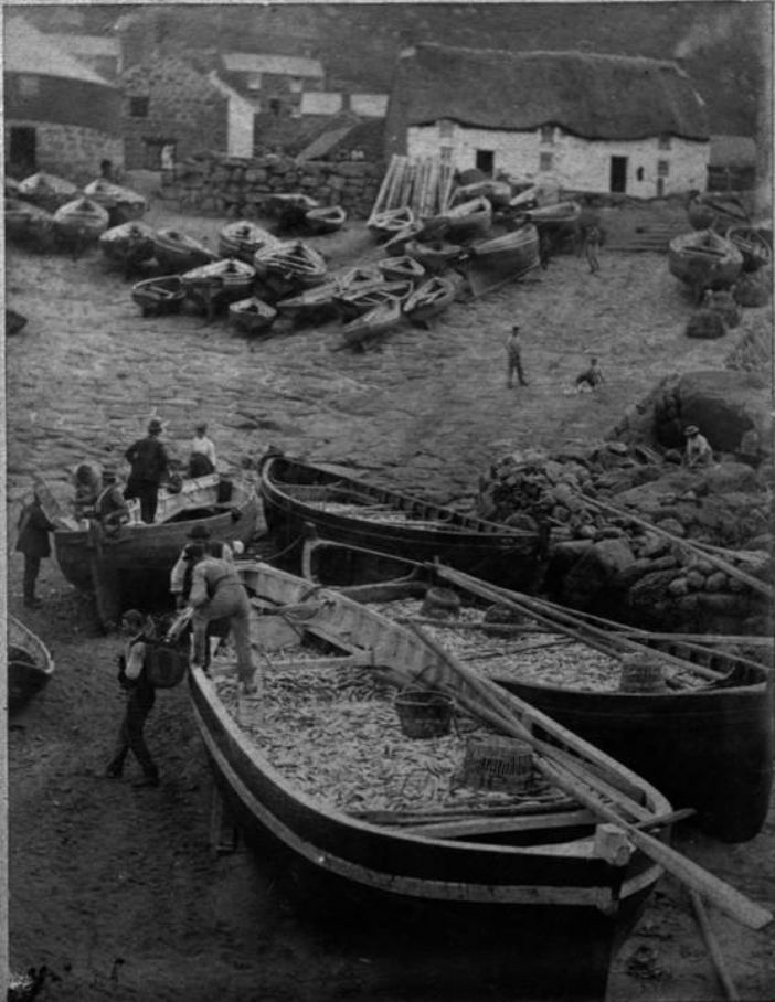 Unloading pilchards from a seine boat at Sennen (Morrab Library Photo Archive)